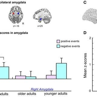 Lying, Deception, and fMRI: A Critical Update by Michael S